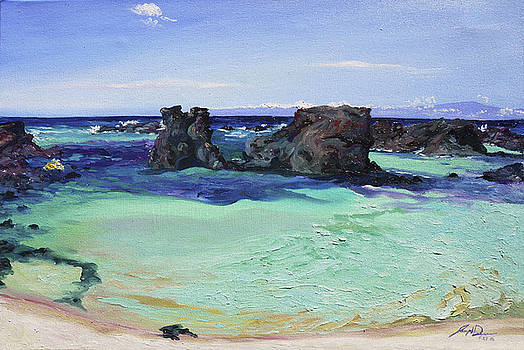 Kikaua Point Beach by Joseph Demaree