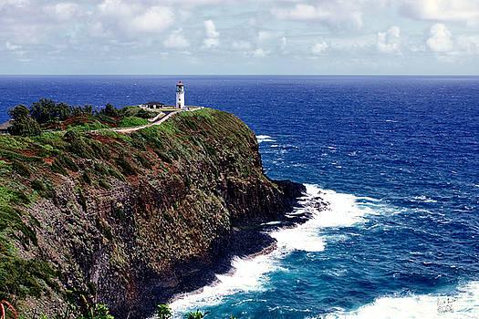Kilauea Lighthouse, Kauai by Rick Lawler