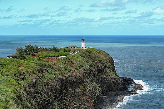 Susan Rissi Tregoning - Kilauea Point Lighthouse