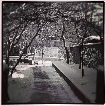 Kindness Is Like Snow, It Beautifies by Jen Peterman