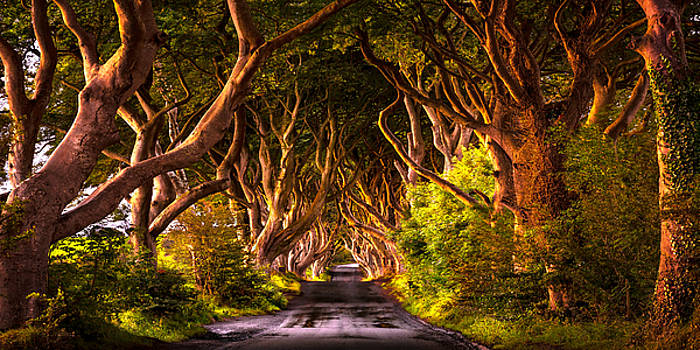 Kinds Road by Ryan Smith