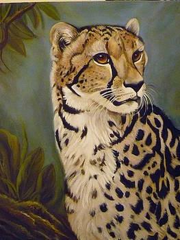King Cheetah by Janet Silkoff