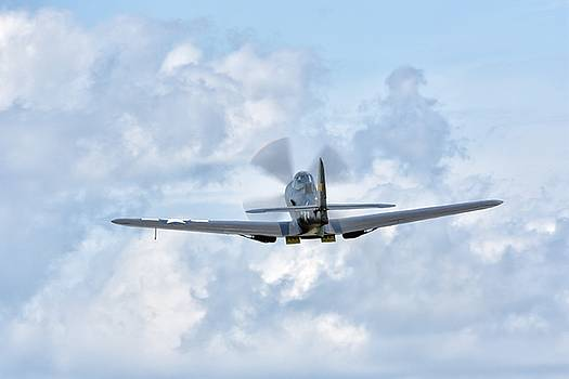 King Cobra Departing - 2017 Christopher Buff, www.Aviationbuff.c by Chris Buff