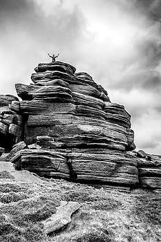 King of the Hill by Nick Bywater