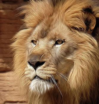 King portrait OP by Ronda Ryan