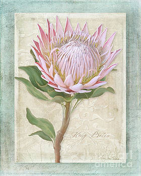 King Protea Blossom - Vintage Style Botanical Floral 1 by Audrey Jeanne Roberts