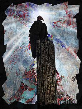 King Vulture by Robert Ball