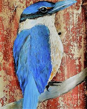 Kingfisher And Rust by Tracey Lee Cassin