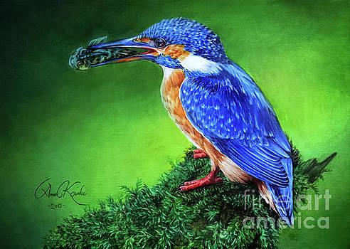 Kingfisher by Anne Koivumaki - Fine Art Anne