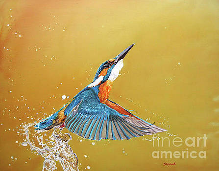Kingfisher by Diane Marcotte