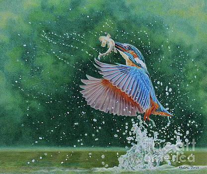 Kingfisher Explosion by Elaine Jones