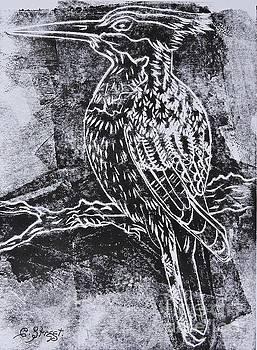 Caroline Street - Kingfisher in Monochrome