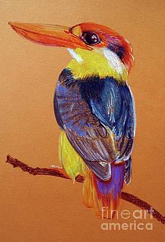 Kingfisher by Jasna Dragun