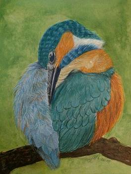 Kingfisher by Joan Mansson