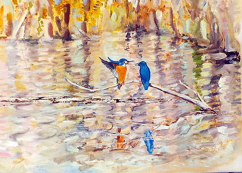 Kingfishers by Chris Walker