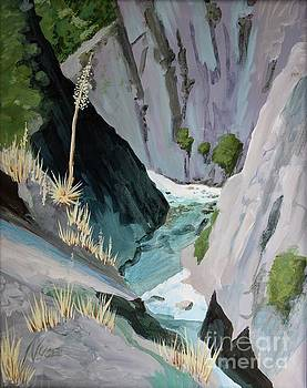 Kings River Canyon by James Nuce