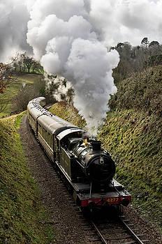 Kingswear to Paignton Train by Pete Hemington