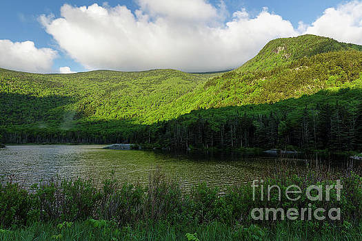 Kinsman Notch - White Mountains New Hampshire by Erin Paul Donovan