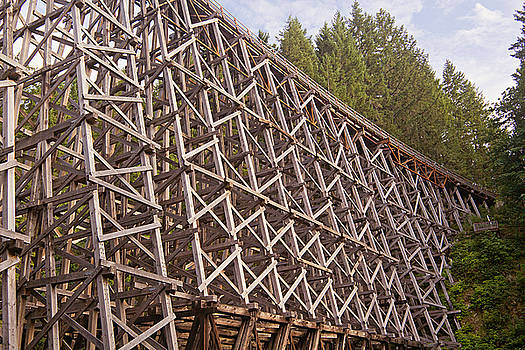 Kinsol Trestle 1 by Peter J Sucy