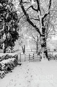 Steve Purnell - Kissing Gate In The Snow