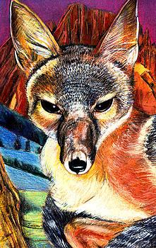 Kit Fox by John Keaton