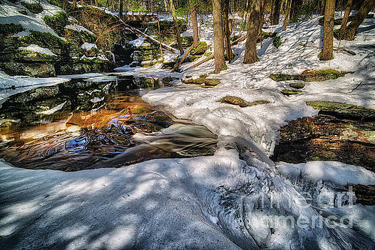Kitchen Creek Reflections at The Top of Adams Falls, 2017.03.21 by Aaron Campbell