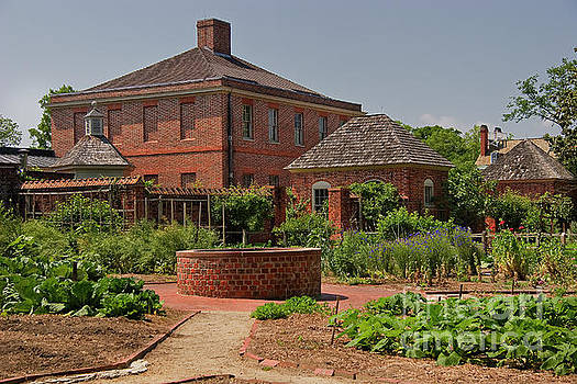 Jill Lang - Kitchen Garden at Tryon Palace