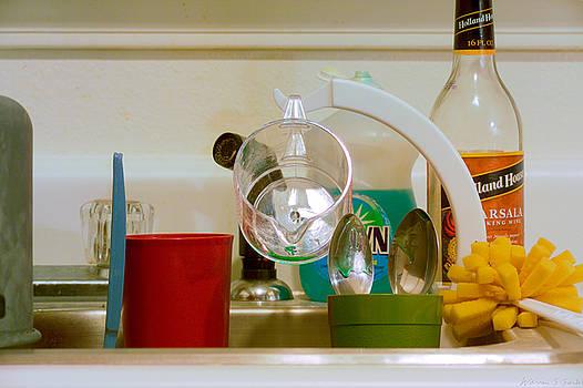 Warren Sarle - Kitchen Sink