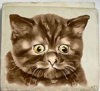 Kitten 01 by Sergey Lukashin