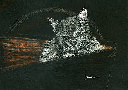 Kitten In A Basket by Jessica Kale
