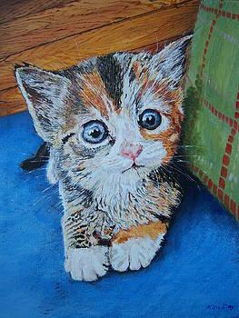 Kitten by Ken Day