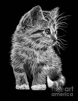 Kitten by Murphy Elliott
