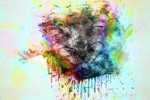 Kitten by Tatiana Tyumeneva