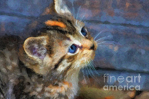 Jill Lang - Kitten Watercolor