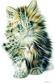 Kittens Big Dreams by Ericamaxine Price