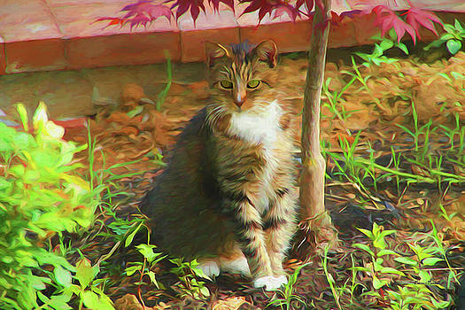 Kitty in the Garden - Painting by Ericamaxine Price