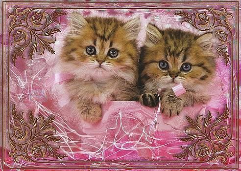 Kitty Love by Mario Carini