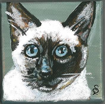 Kitty Portrait 1 by Sarah Lowe