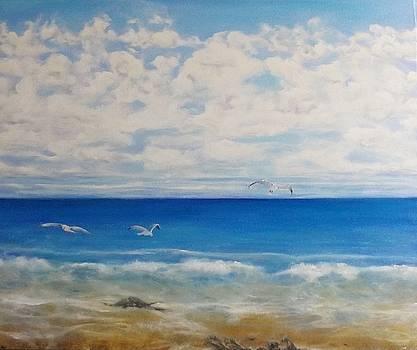 Kiwi Coastlines 1 by Chris Keenan
