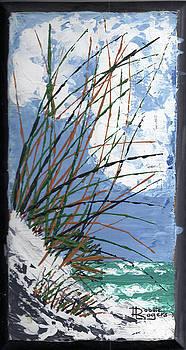 Knife BeachSketch 1 by Robbie L Rogers