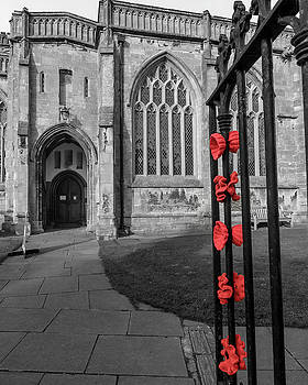 Jacek Wojnarowski - Knitted Poppies on a Church Iron Gate