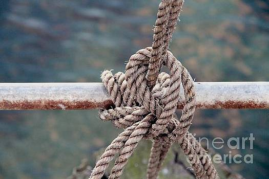 Knot of my Warf by Stephen Mitchell