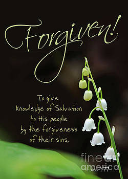 Knowing Salvation Knowing Forgiveness by Robin Clifton