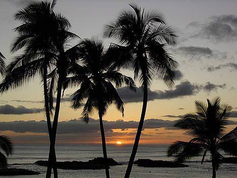 Ko Olina Sunset 1 by Steve Fisher