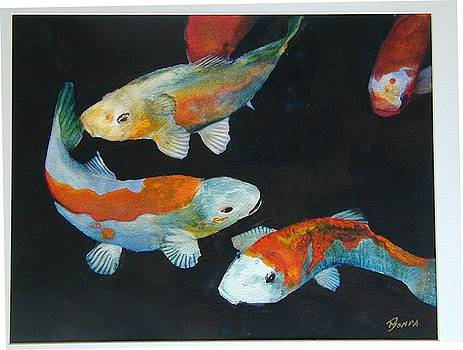 Koi by Dwight Williams