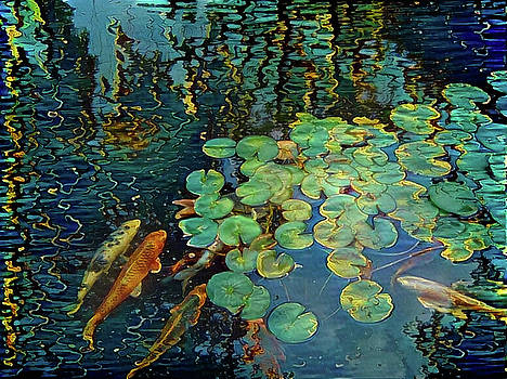 Koi fish in pond by Bruce Rolff