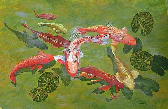Koi I by Jennifer  Donald