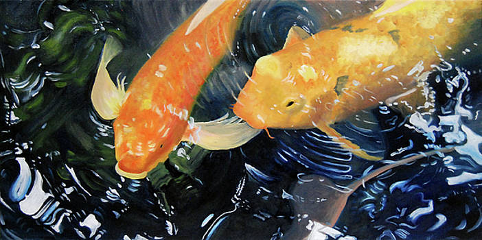 Koi In The Shallows by Nancy Viola