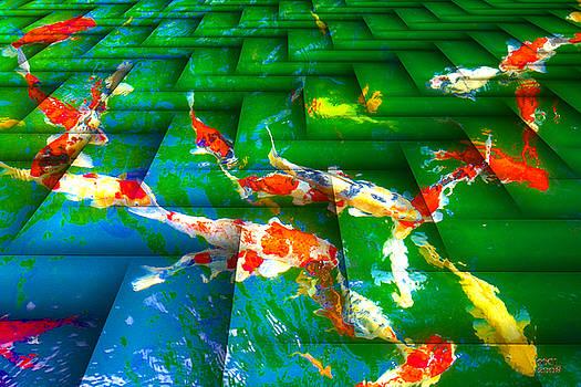 Manny Lorenzo - Koi Mosaic I