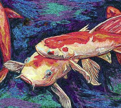 Koi Pond by Julianne Black